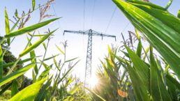 Biogas - ein Beitrag zum Klimaschutz? (Teil 1)