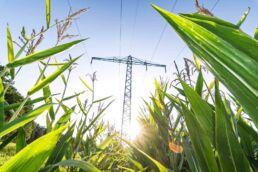 Klimaschutz mit Biogas © fotolia / Calado