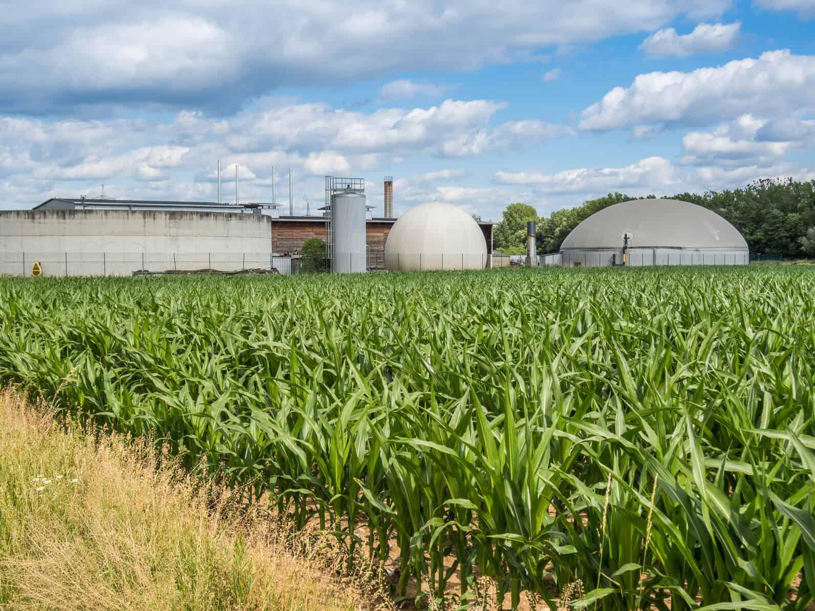 Biogas – ein Beitrag zum Klimaschutz? (Teil 2)