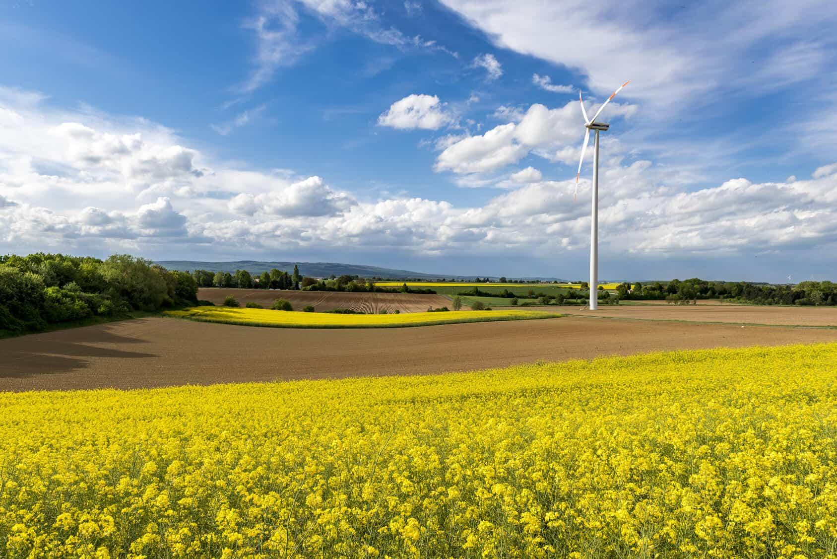 Die Zukunft der Erneuerbaren Energien – wohin geht der Weg?