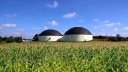 Energie aus Biomasse – Warum Sie noch 2018 in ein Blockheizkraftwerk investieren sollten