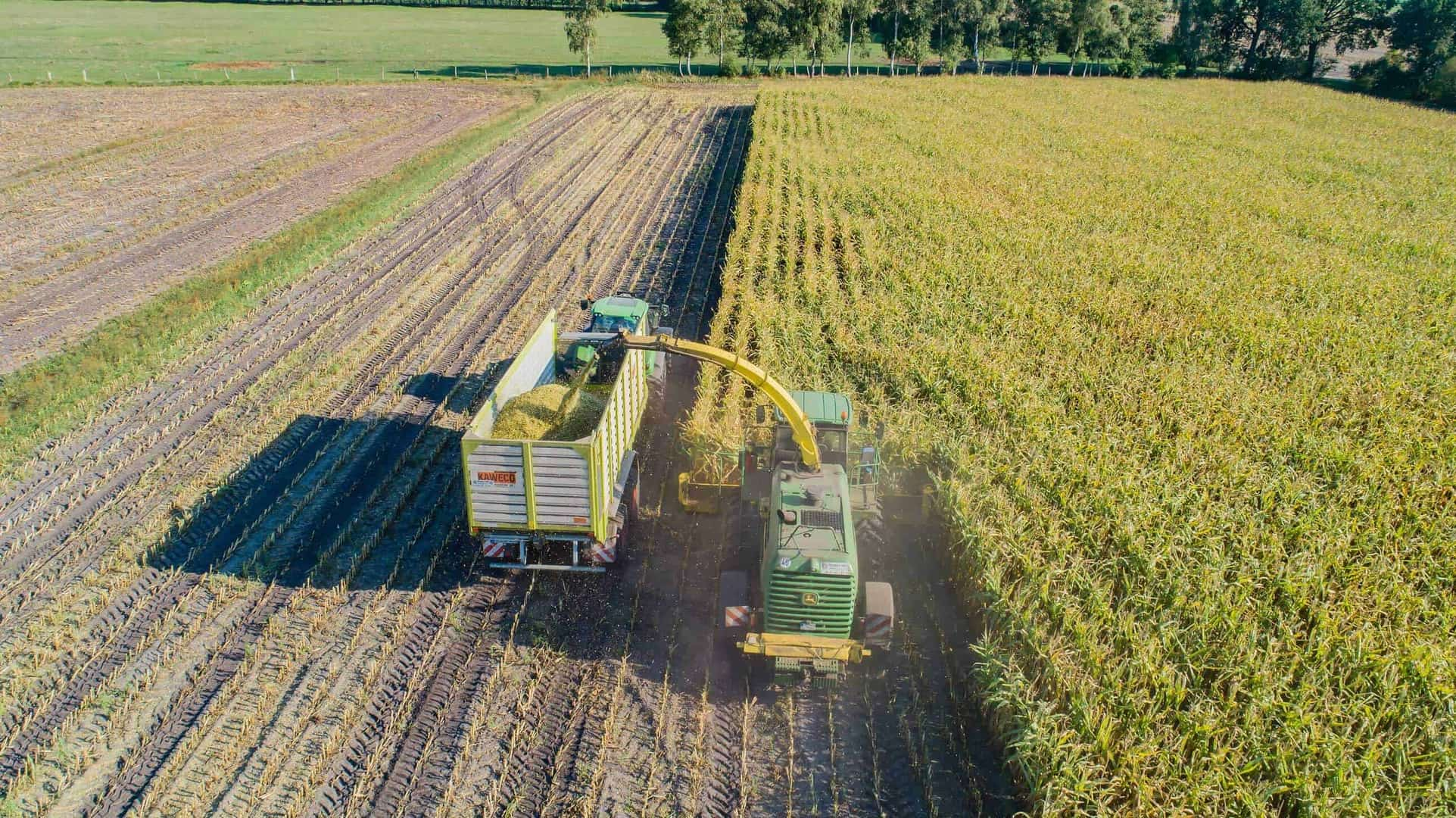 8 Dinge, die Sie garantiert noch nicht über Biogaserzeugung wussten – Teil 2