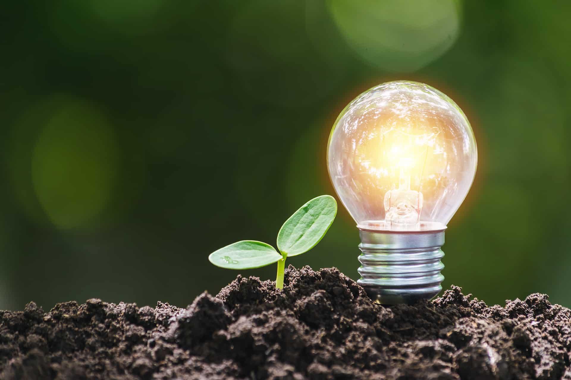 Energiewende: Diese sechs wichtigen Technologien stehen (noch) nicht im täglichen Fokus