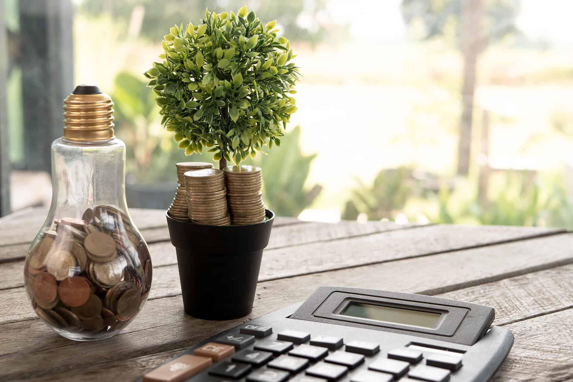 Förderung für BHKW 2020 - Glühbirne und Baum mit Münzen und Taschenrechner